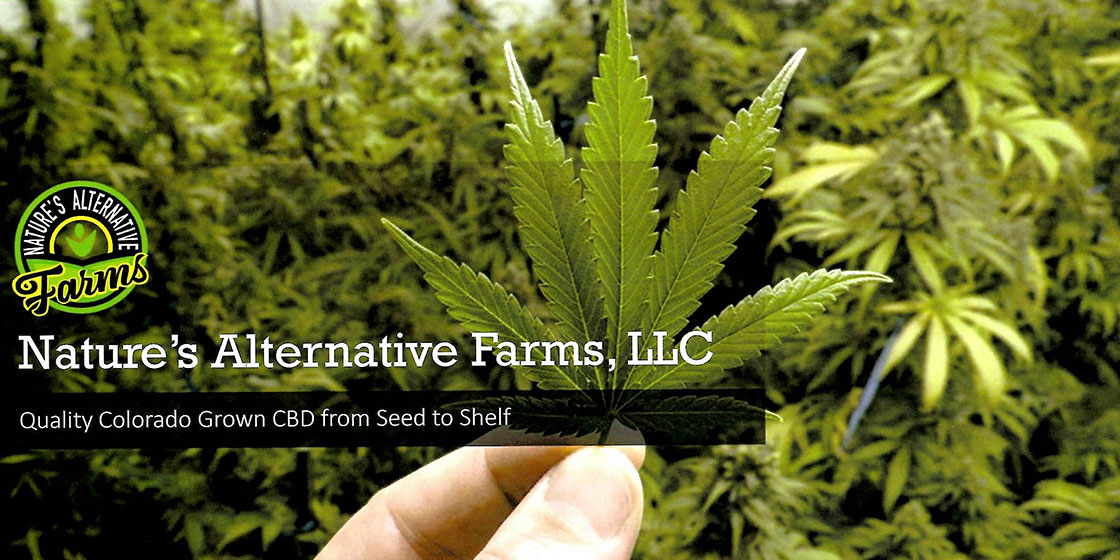 Hemp Farm and Processing Plant Becoming Reality in McClave